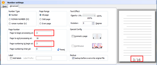 advanced settings of PDF page numbering