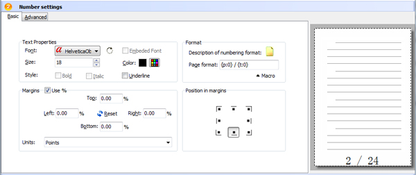 basic settings of PDF page numbering