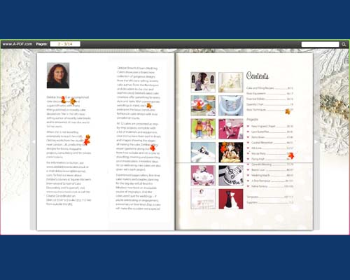 a-pdf to flipbook pro edit pages toolbar