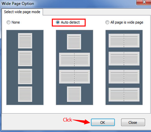 detect wide page of PDF files and convert it to Flash Flipbook2