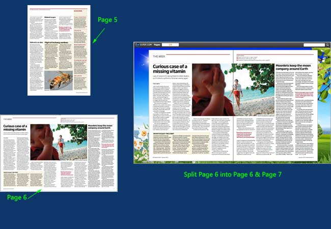 detect wide page feature to split landscape page into two portrait pages