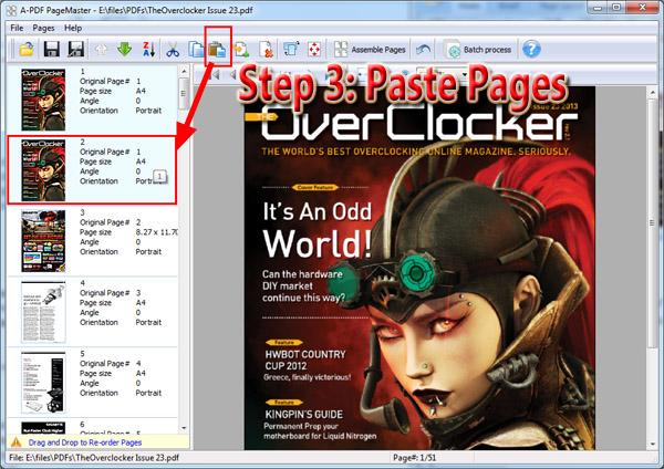paste PDF pages