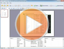 pdf-to-excel-video-tutorial-image